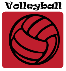 Volleyball-Button